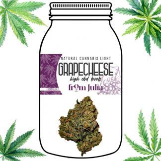 Grape Cheese From Julia cannabis light erba legale olio cbd